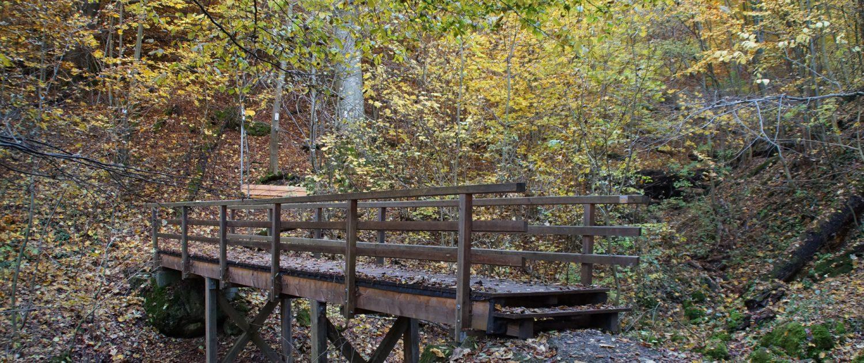 Brücke am Kocherursprung Unterkochen